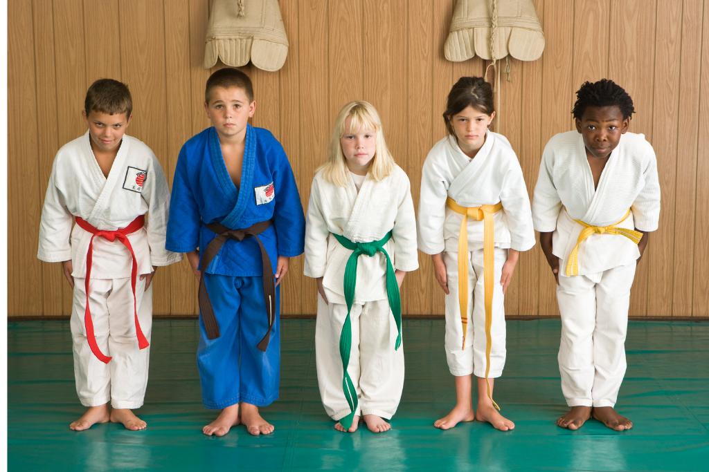Our Judo Champion Mindset Program