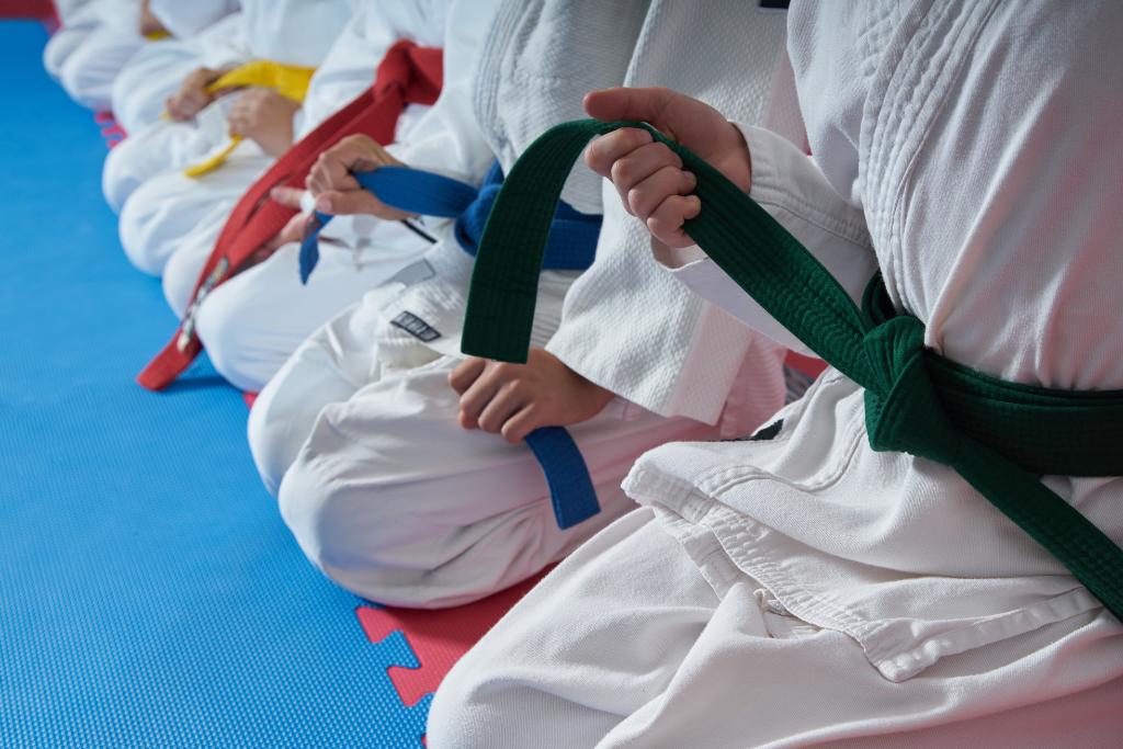 Junior Judo Class
